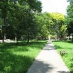 park-3